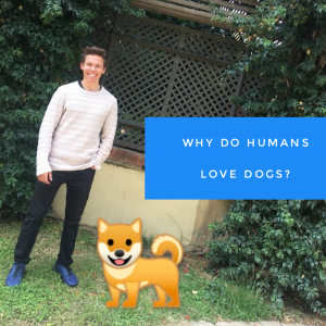 Why do Humans Love Dogs?